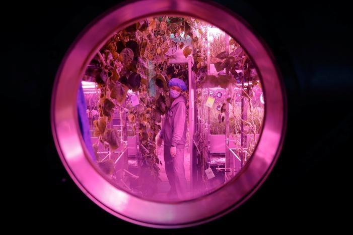 В Китае началась 200-дневная программа симуляции жизни на Луне - 1