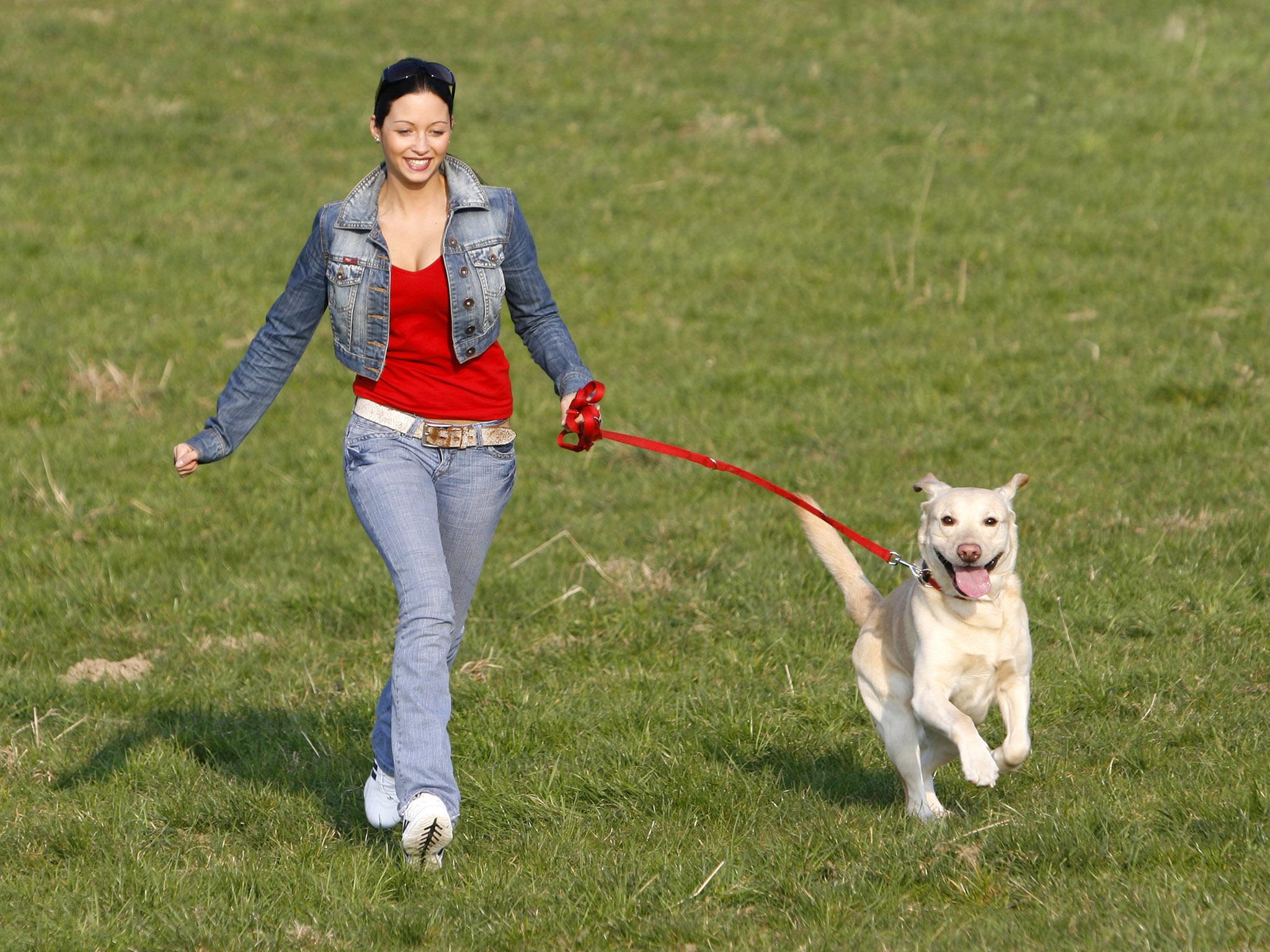 Ученые Стэнфорда: в Китае, Японии, Украине и России самые активные граждане - 1