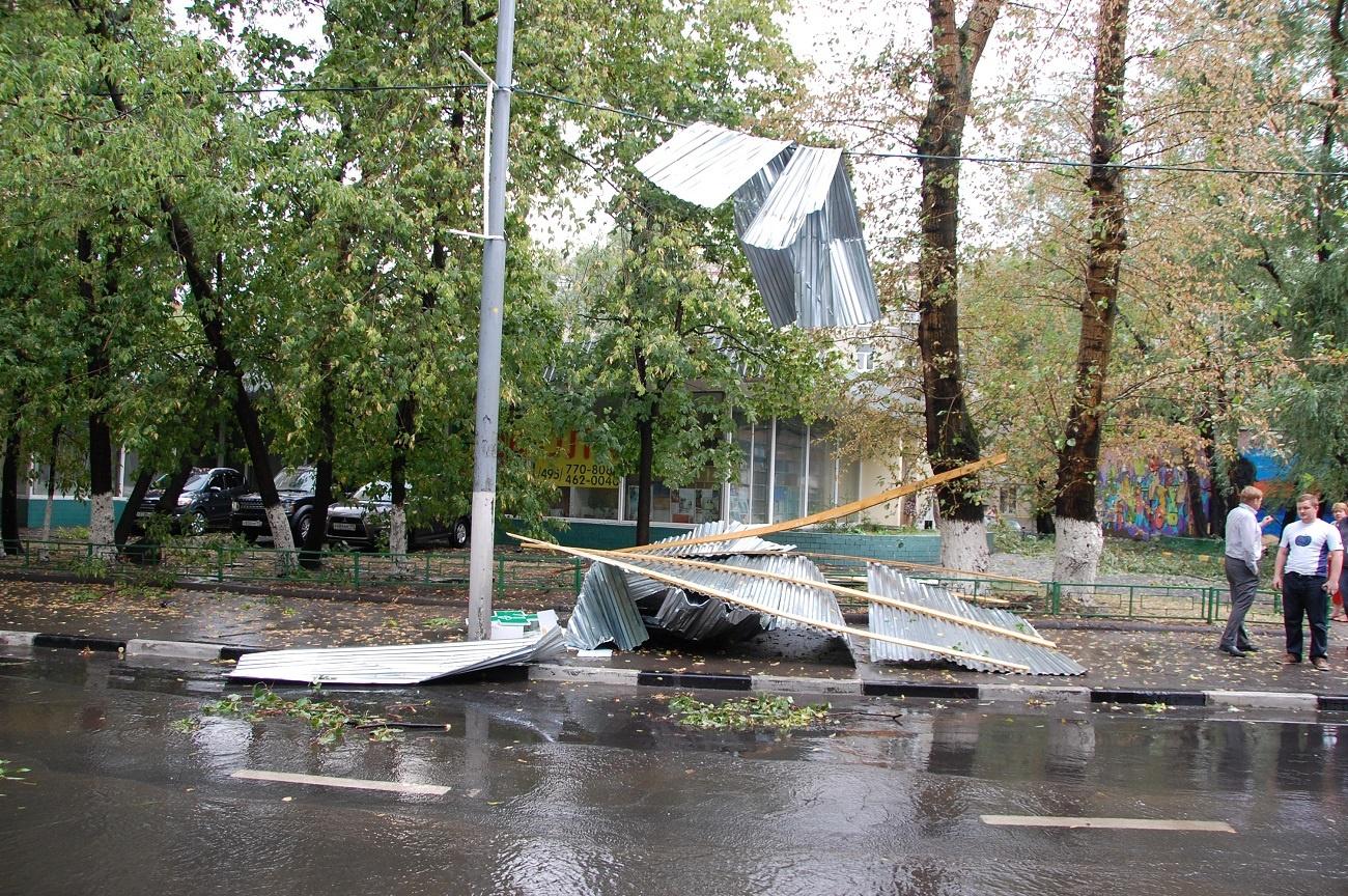 Когда деревья были большими: как маленький дата-центр ураган пережил - 5