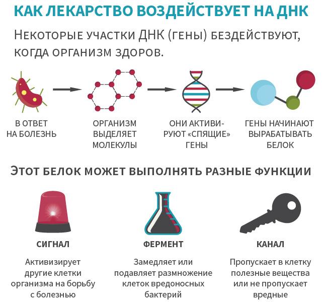 Что делают химики и биологи в ЕРАМ? - 3