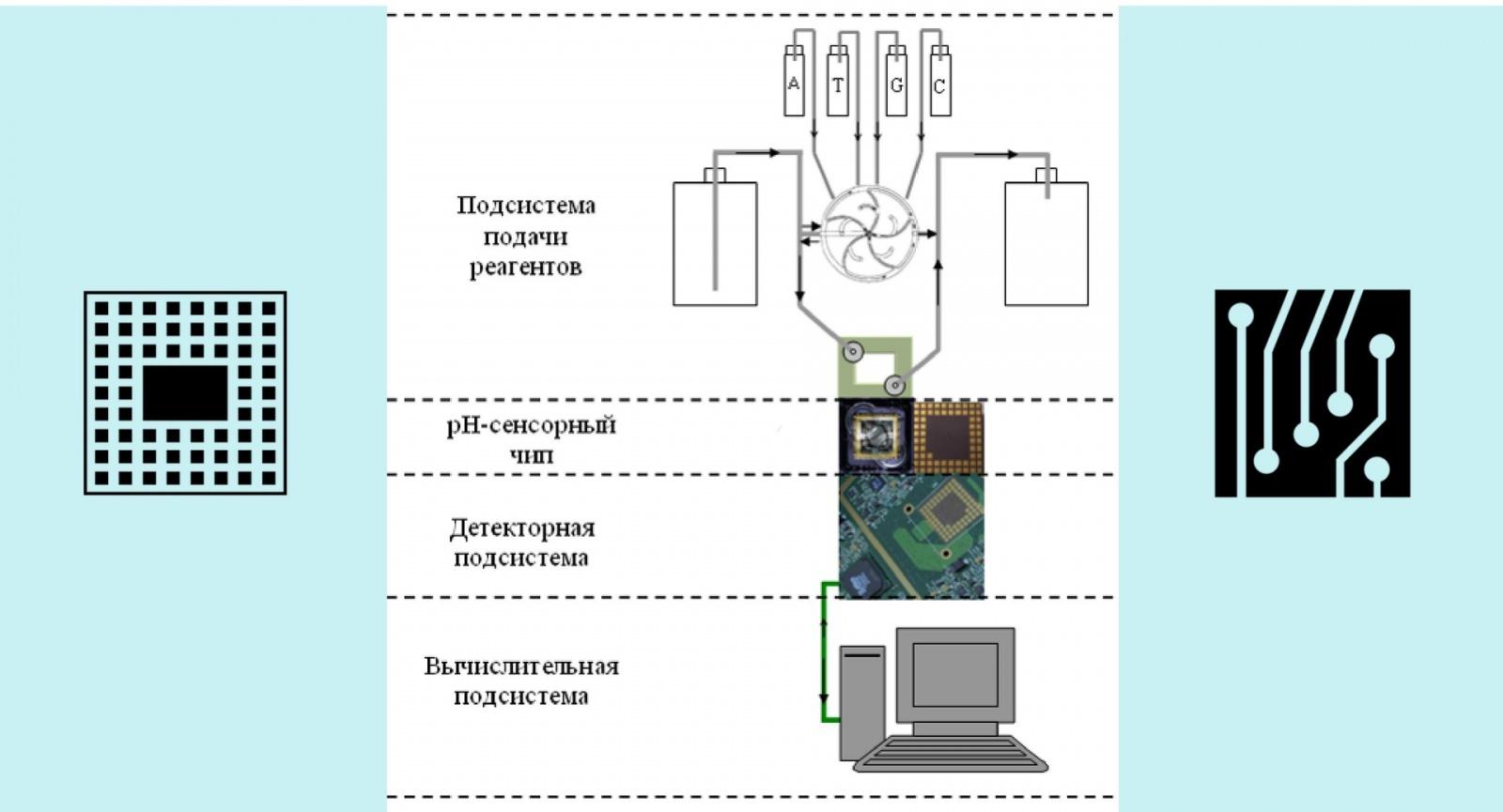 Секвенирование ДНК в домашних условиях: Как на коленке собрать прибор за 10 миллионов - 3