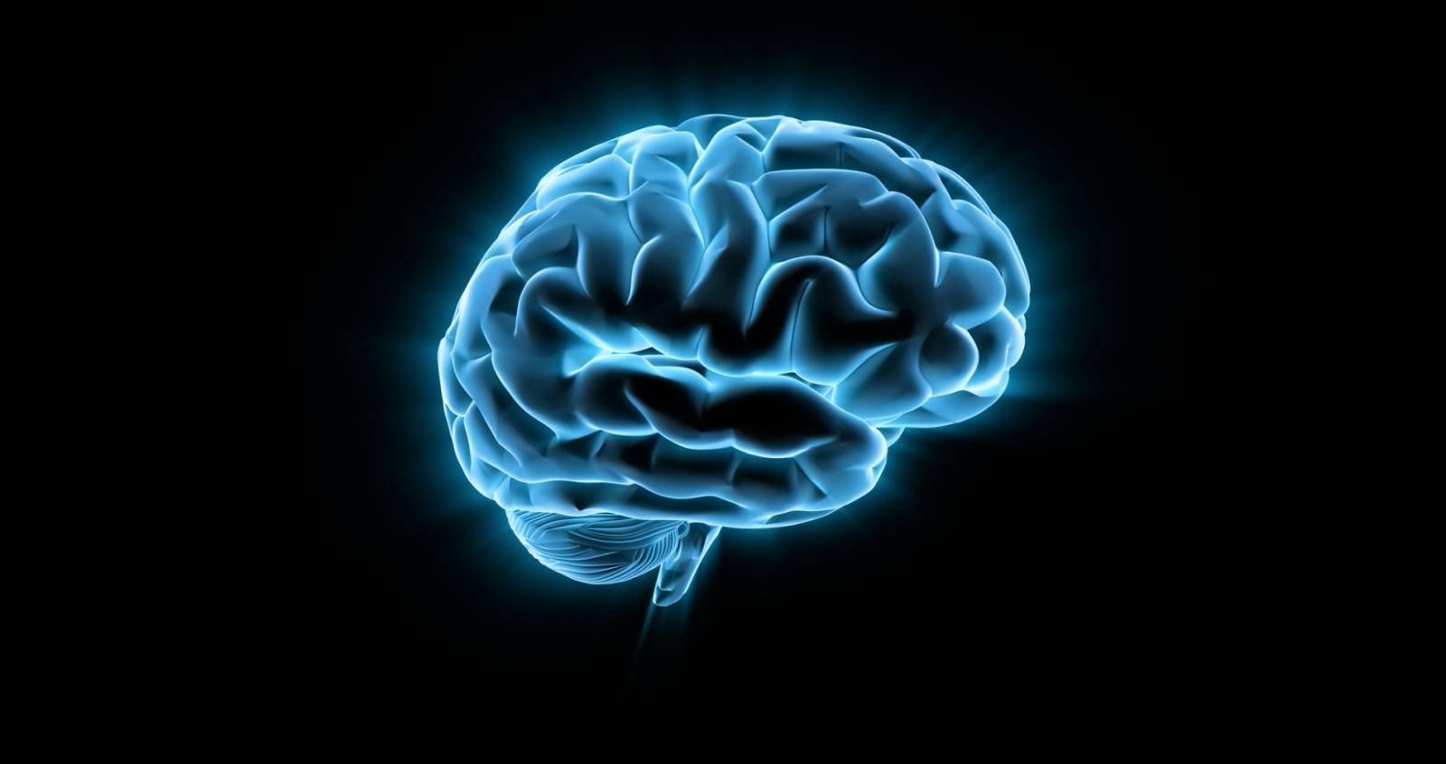 Эликсир бессмертия, возможно, находится в нашем собственном мозге - 1