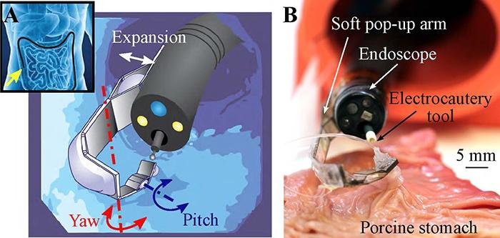 В Гарварде создали мягкий роботизированный манипулятор для эндоскопической хирургии - 2