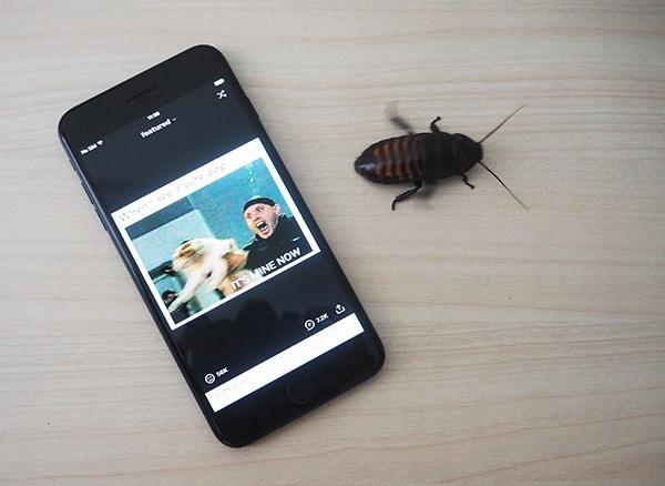 UI-тесты для iOS: почему нужно поверить в дружбу QA и разработки, но не обольщаться - 1