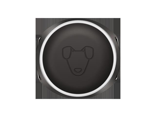 Кастомная GPS-антенна, SIM-чип, процессор и 8Мб памяти: из чего сделан умный собачий ошейник Mishiko - 1