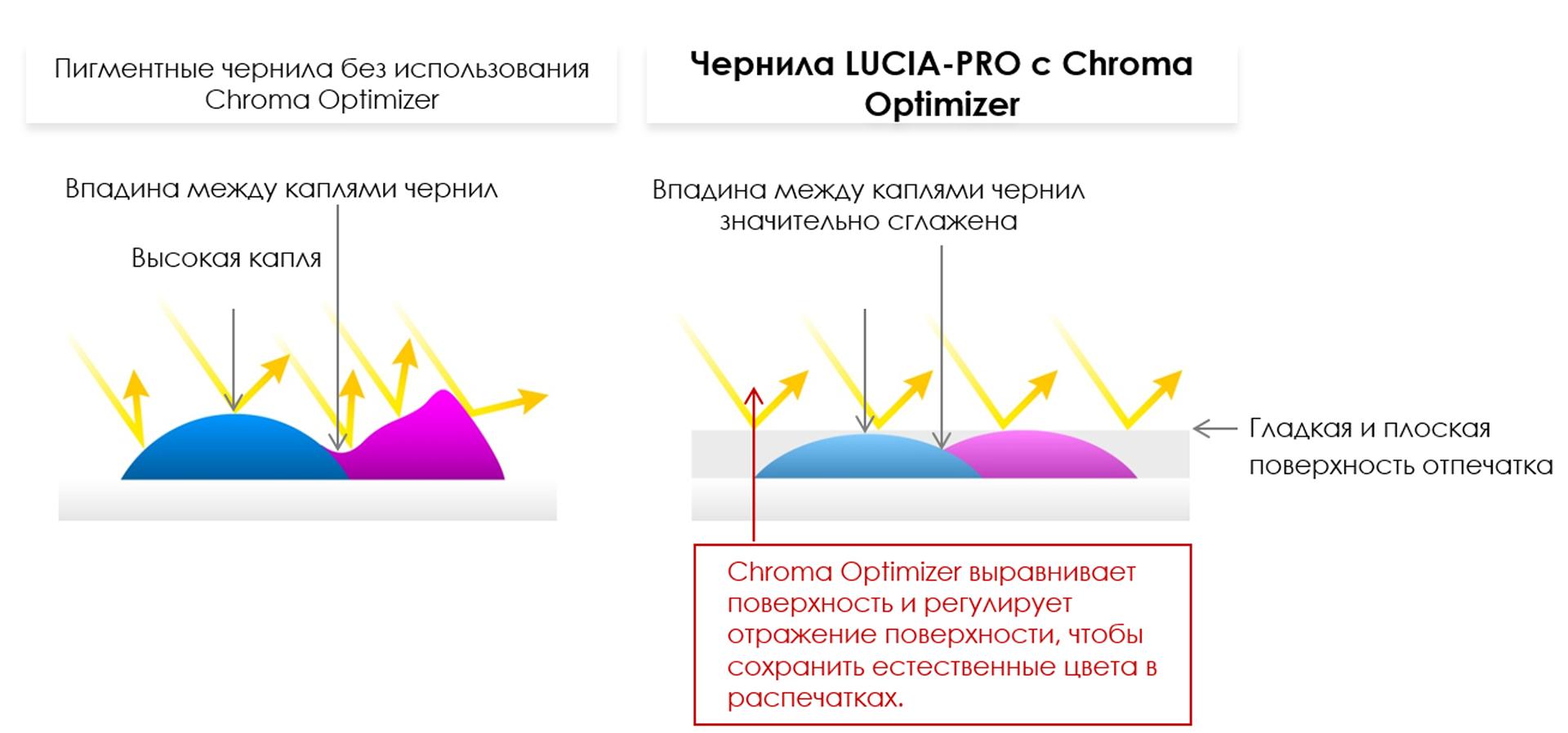 Тонкая красная линия: обзор широкоформатного принтера Canon imagePROGRAF PRO-2000 - 5