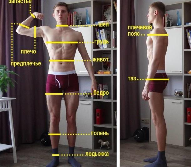 Зачем покупать весы-анализаторы и на какие показатели обращать внимание - 7