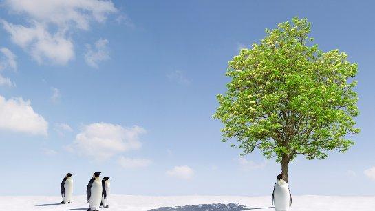 Оказалось, что глобальное потепление не зависит от количества углекислого газа