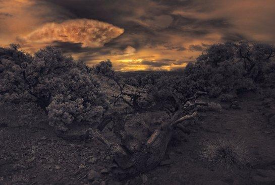 Ученые считают, что тот метеорит, который в прошлом убил динозавров, одновременно организовал на планете двухлетнюю ночь
