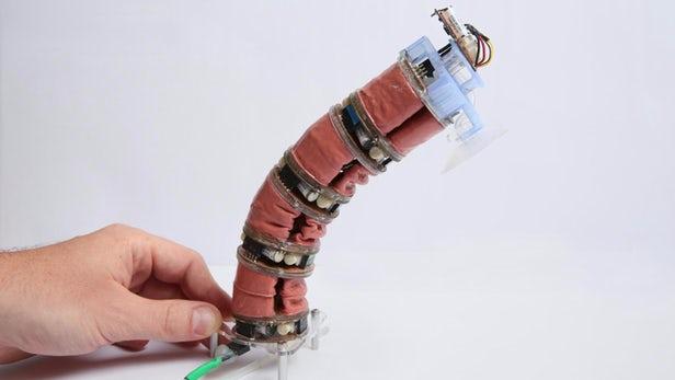 В области робототехники ученые сделали большой прорыв