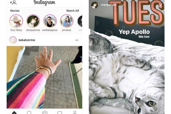 Теперь можно просматривать истории Instagram в Интернете