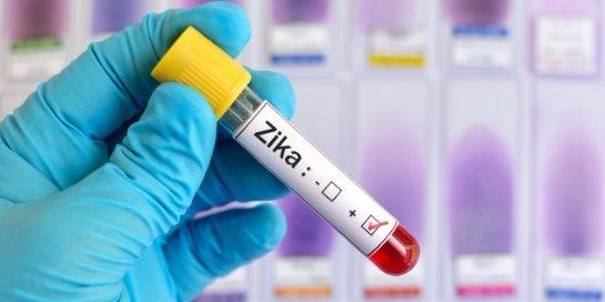 Вирус Зика используют для лечения агрессивного рака мозга