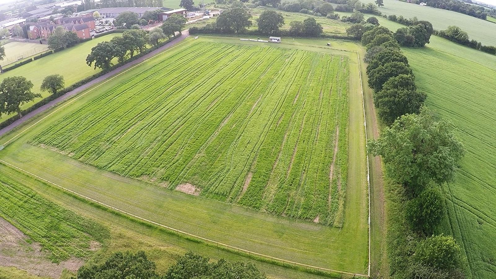 Агрономы-робототехники из Великобритании вырастили и собрали весь урожай при помощи автоматики - 2