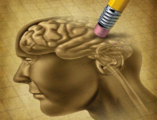 Ученые рассказали, почему человечество теряет свой интеллект