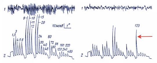 Пульсации яркости: факты, механизмы и нормы - 2