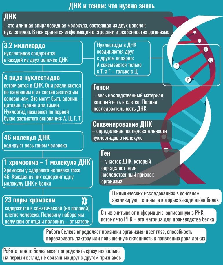 Просто о сложном: что нужно знать о биоинформатике - 2