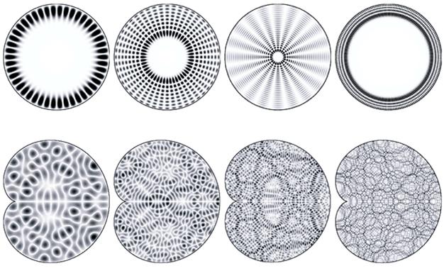 Фигуры Хладни и квантовый хаос - 22