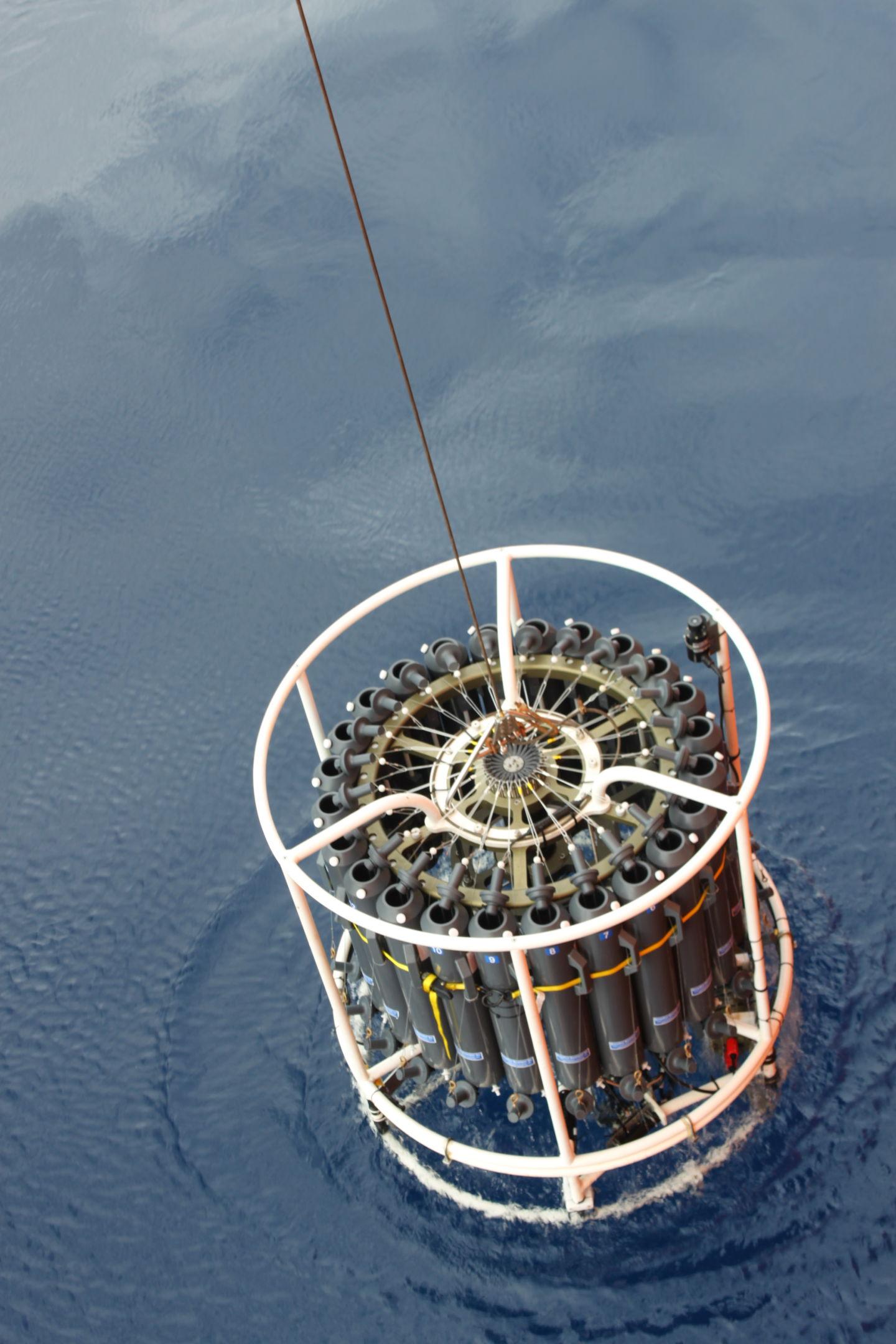 Истории из жизни IT-специалиста на судне, прошедшем вокруг Антарктики - 14