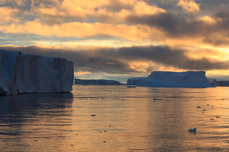 Истории из жизни IT-специалиста на судне, прошедшем вокруг Антарктики - 17