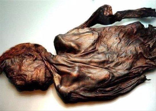 Ученые узнали о погребальном ритуале первых ирландцев