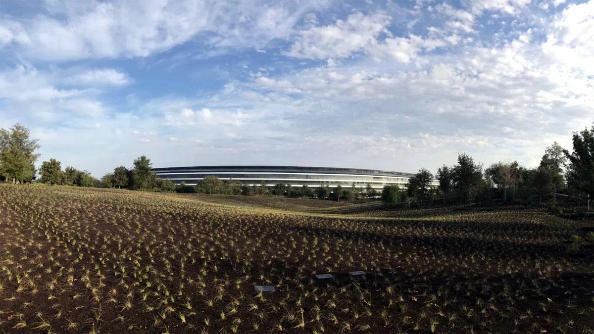 Apple Park: круче айфона? - 5