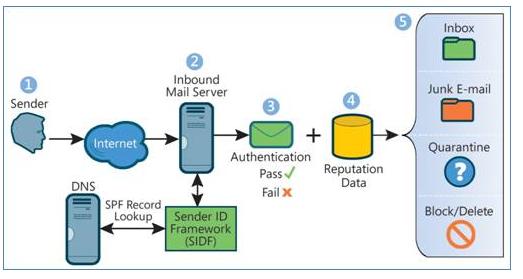 Настройка DKIM, SPF и DMARC в Zimbra Collaboration Suite - 4