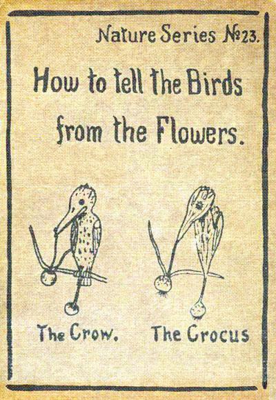 Как отличать птиц от цветов. Или цветы от птиц - 1
