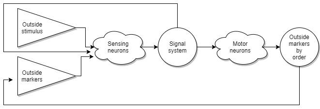 Теоретическая Нейробиология. Часть первая. Основа - 5