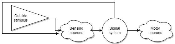 Теоретическая Нейробиология. Часть первая. Основа - 6
