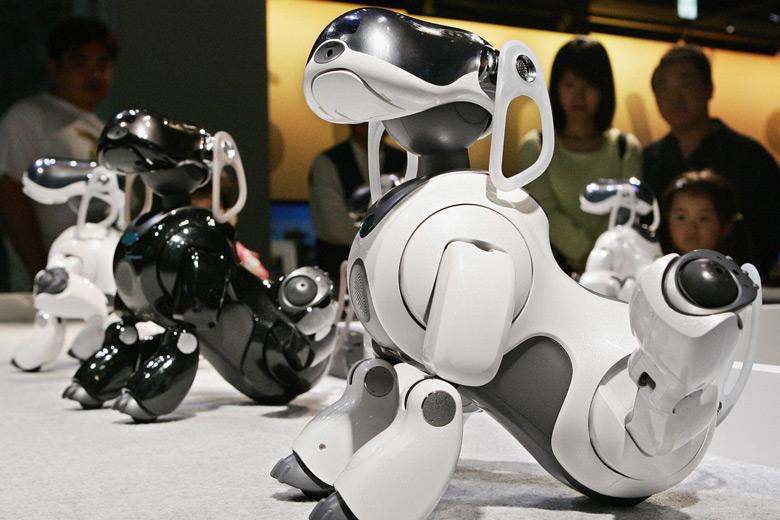 В создании нового робота примут участие разработчики Aibo