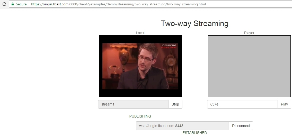 Создаем живую потоковую CDN для видеотрансляций WebRTC с низкой задержкой - 12
