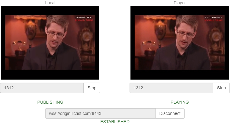 Создаем живую потоковую CDN для видеотрансляций WebRTC с низкой задержкой - 3