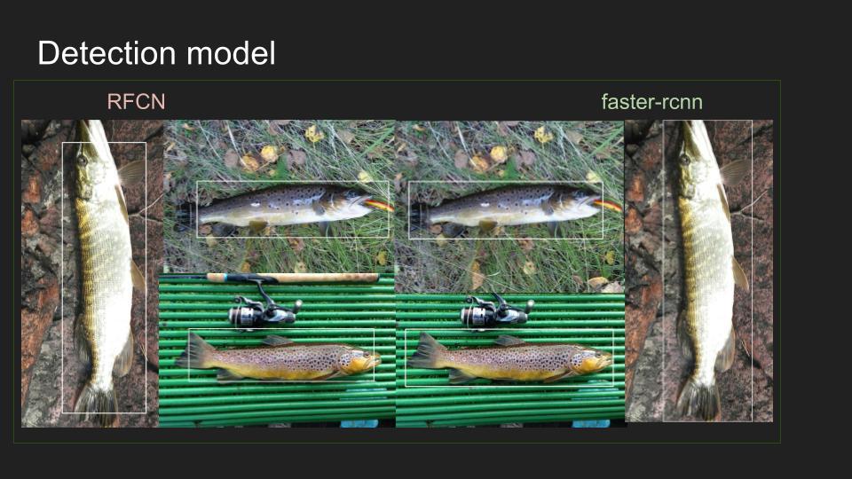 Умные сети для рыбаков: как мы учили смартфоны распознавать рыбу - 15