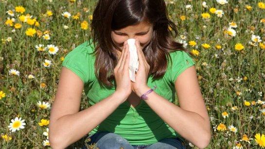 Выявлено более 100 генетических факторов риска развития астмы, сенной лихорадки и экземы