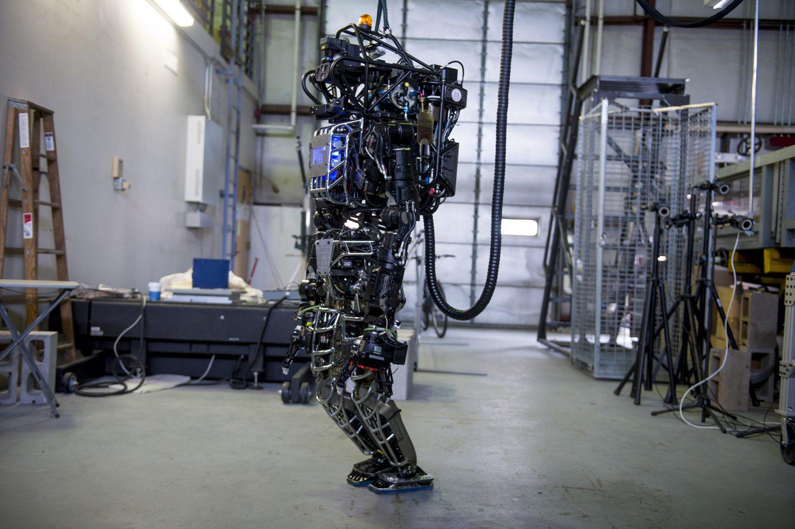 Дождемся ли мы серийного производства гуманоидных роботов? - 6