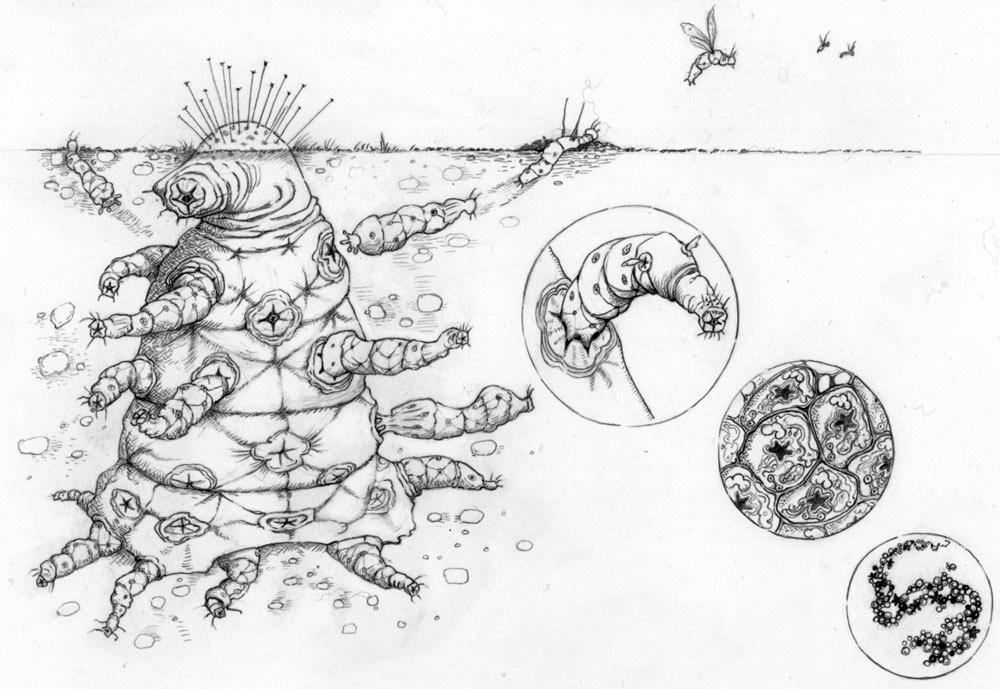 Инопланетяне по Дарвину - 5