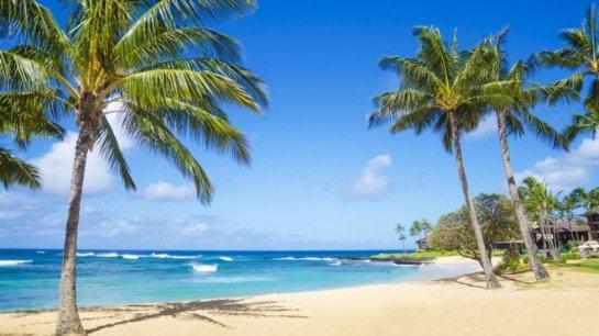 eBay удаляет товар «Гавайский песок»