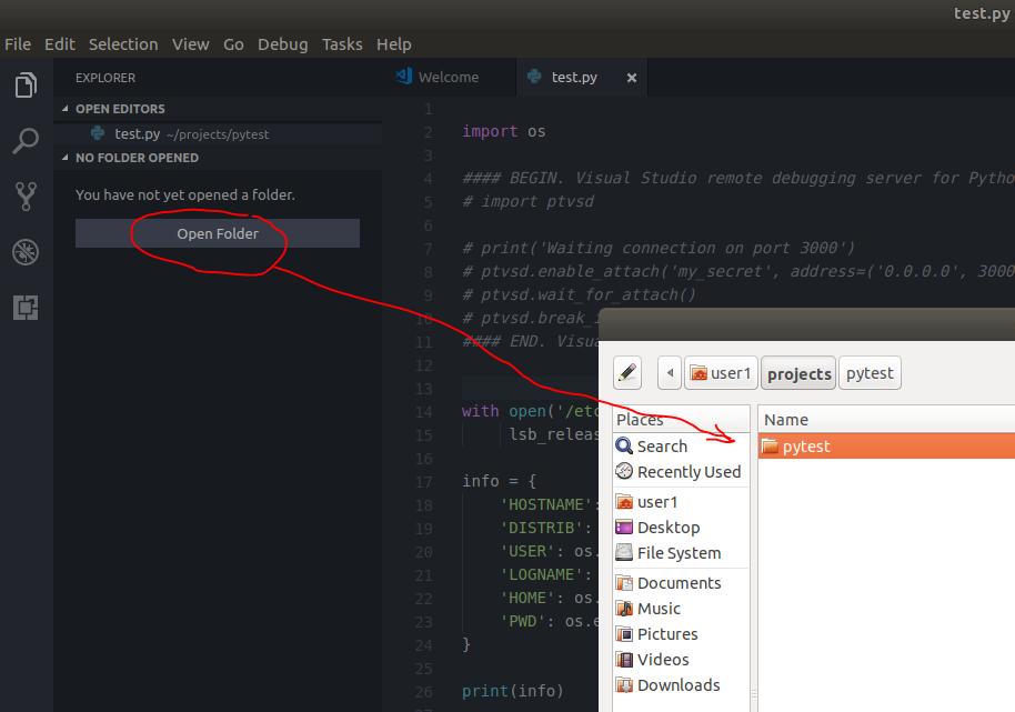 Запуск-отладка Python скриптов в контейнерах LXC-LXD из под VS Code - 2