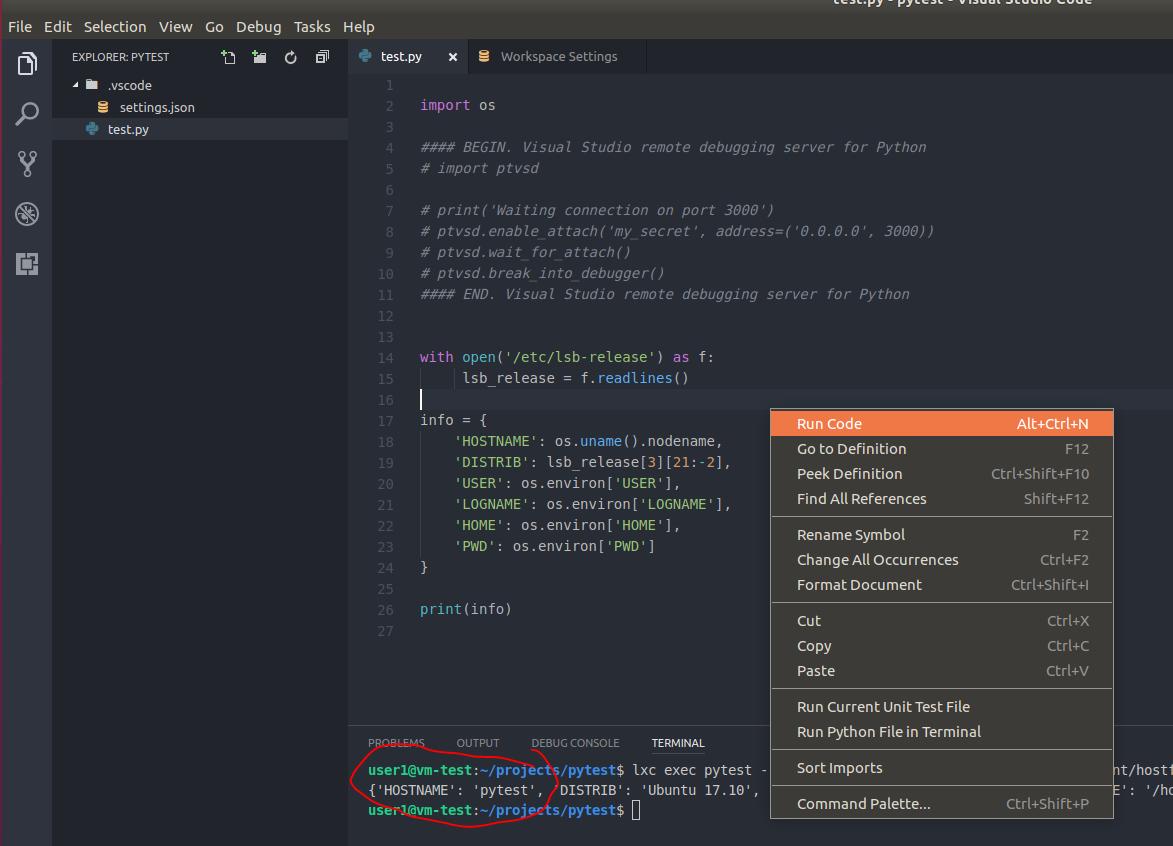 Запуск-отладка Python скриптов в контейнерах LXC-LXD из под VS Code - 4