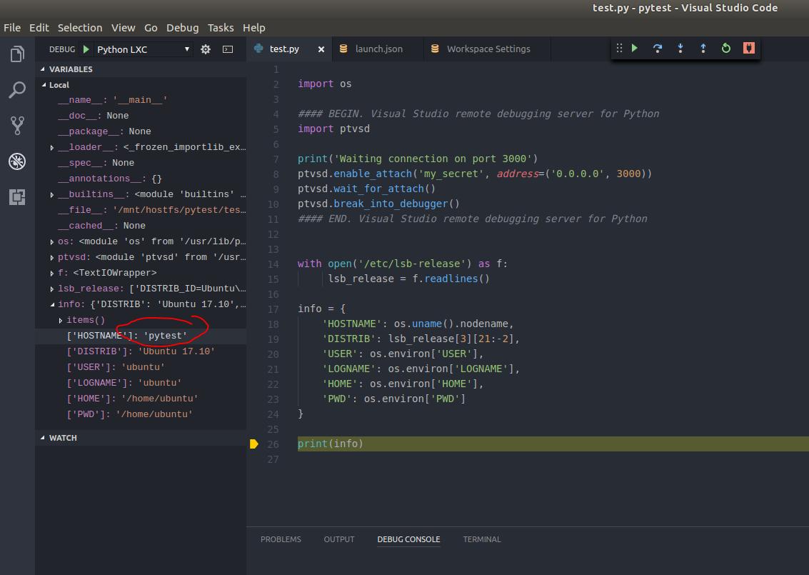 Запуск-отладка Python скриптов в контейнерах LXC-LXD из под VS Code - 7