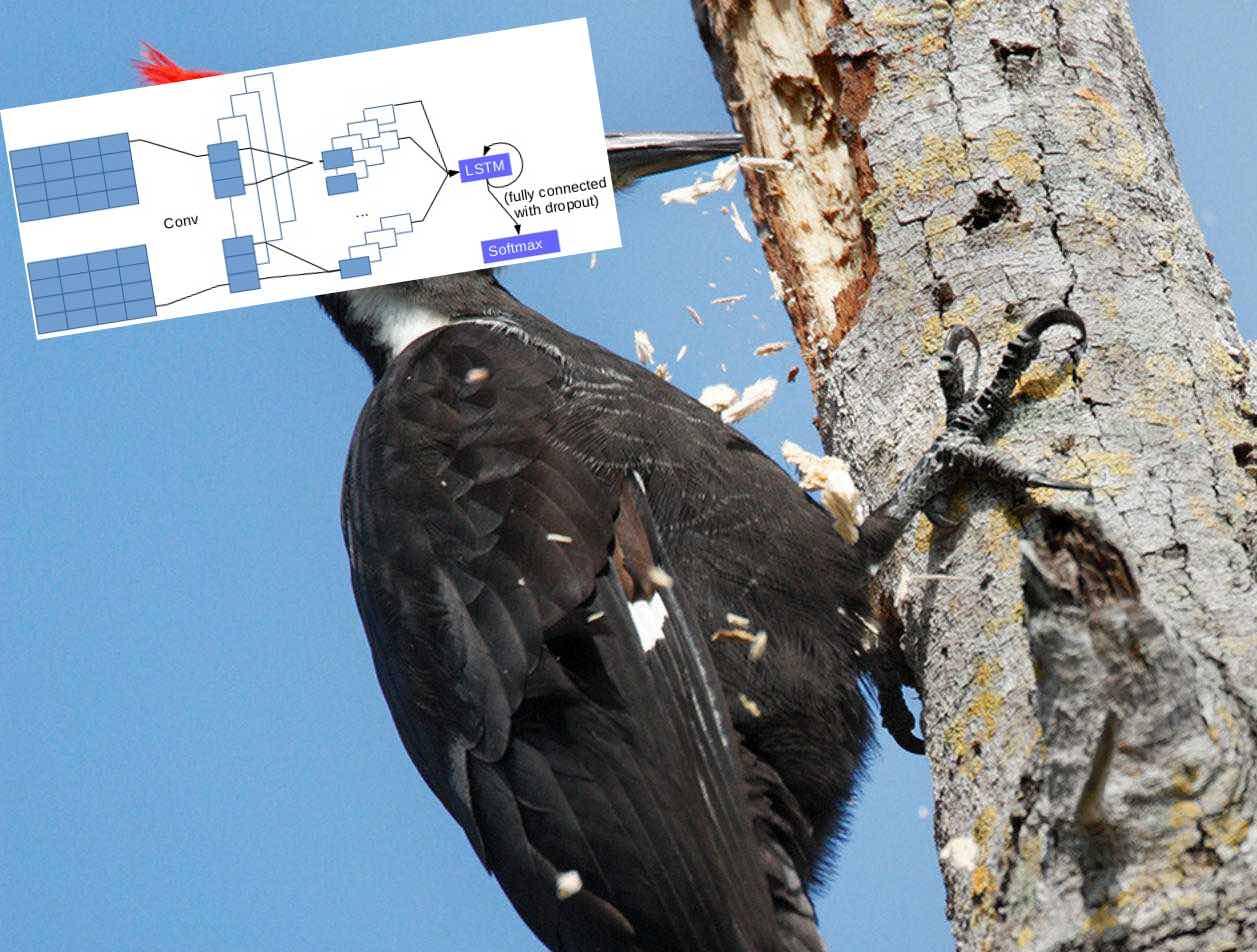 Как мозг бьет дерево, или как мы сделали рекомендательную систему с помощью нейронной сети - 1