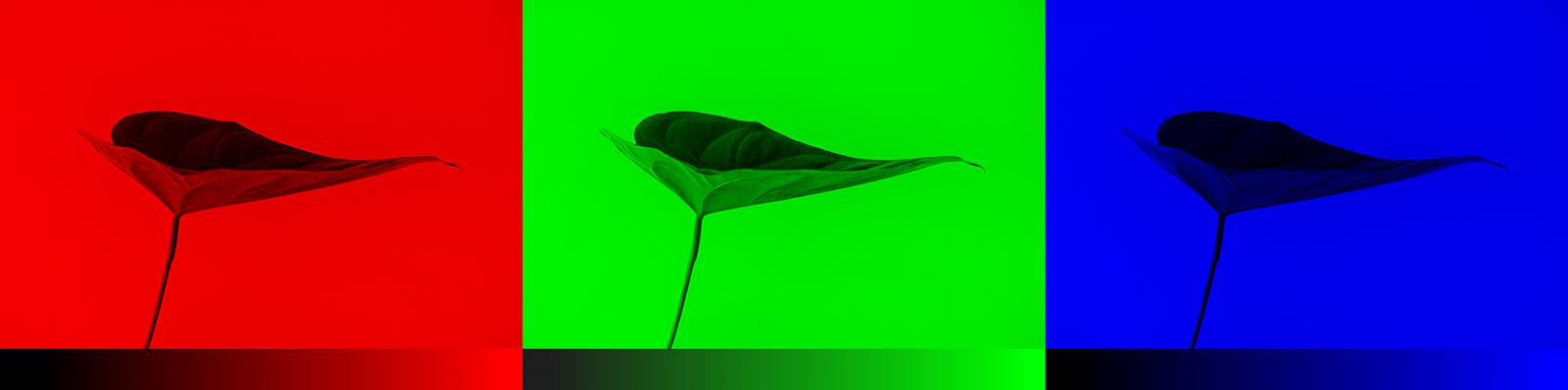 Раскрашиваем чёрно-белую фотографию с помощью нейросети из 100 строк кода - 4