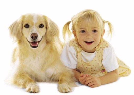 Люди, содержащие собак, живут дольше