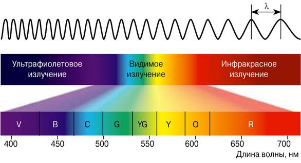 Среднеформатная пленочная фотография в близком инфракрасном спектре - 4