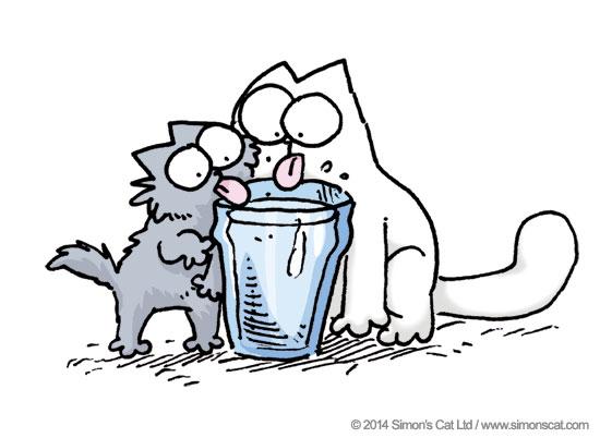 Обсуждение оптимального минерального состава питьевой воды - 1