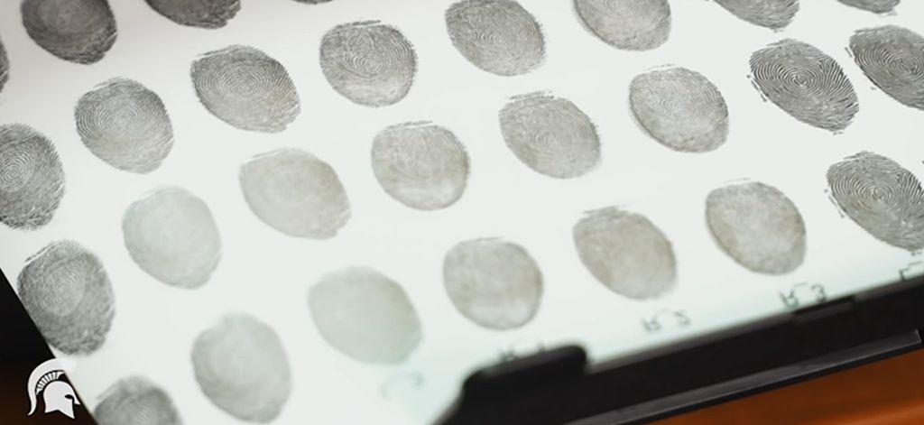 Биометрическая аутентификация: истоки, хаки и будущее - 6