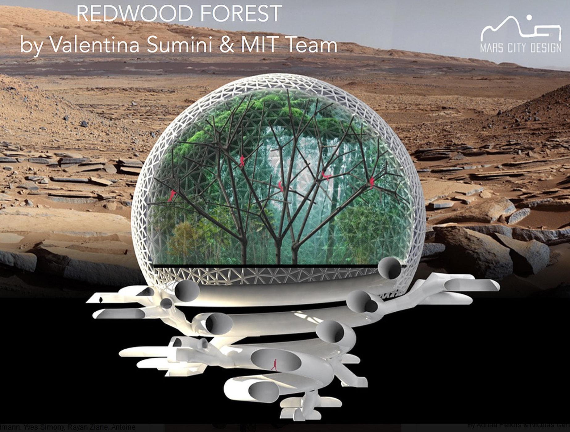 Проект поселения на Марсе, колеса для нового марсохода, картошка и черви в марсианской почве - 1
