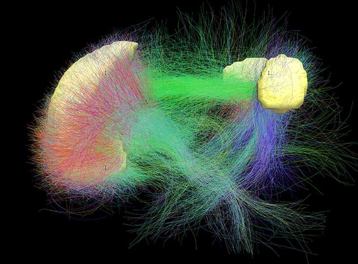 Что с человеком делает скука: наука блуждающего сознания - 3