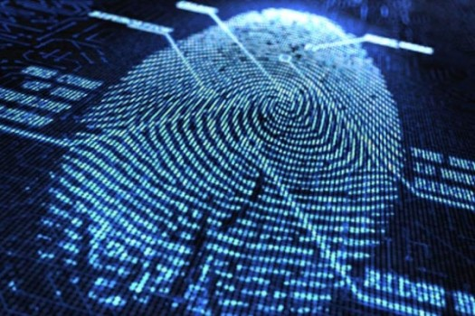 Synaptics начала массовое производство сканеров отпечатков пальцев, расположенных под поверхностью экрана смартфонов